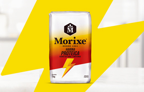 Morixe Protein flour